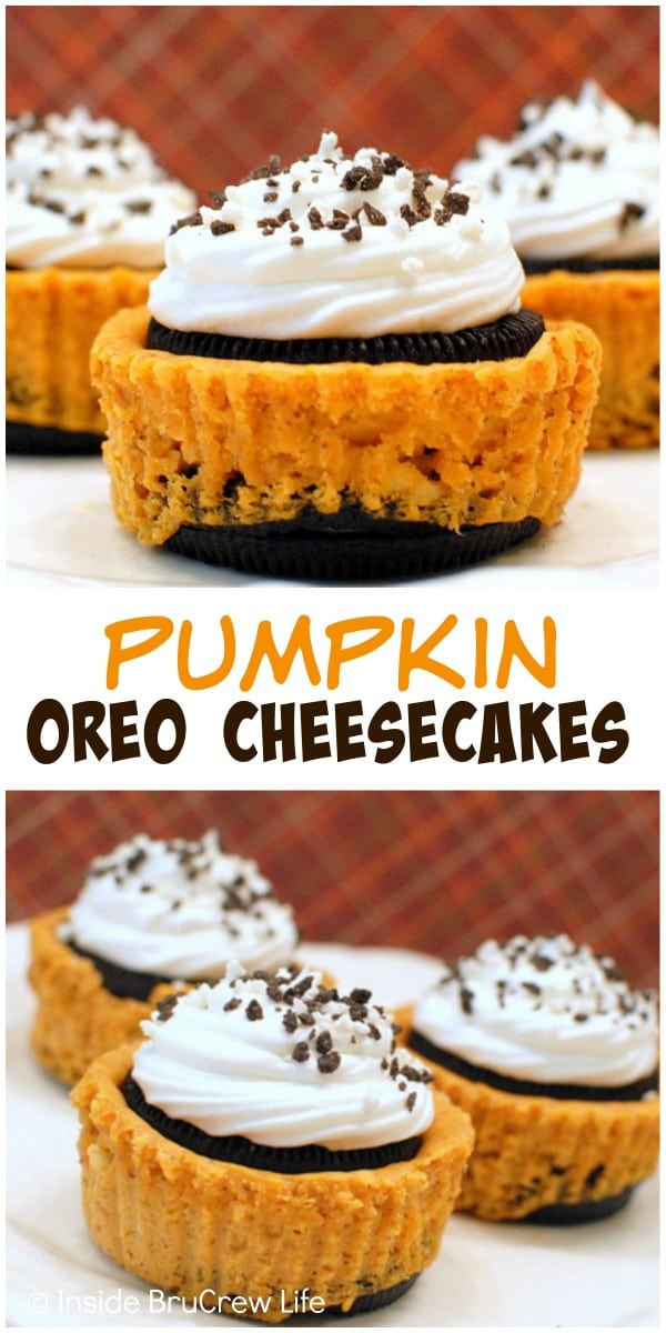 Mini pumpkin cheesecakes sandwiched between an Oreo cookie. These are the perfect fall dessert!