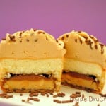 Tagalong Cookie Cupcakes