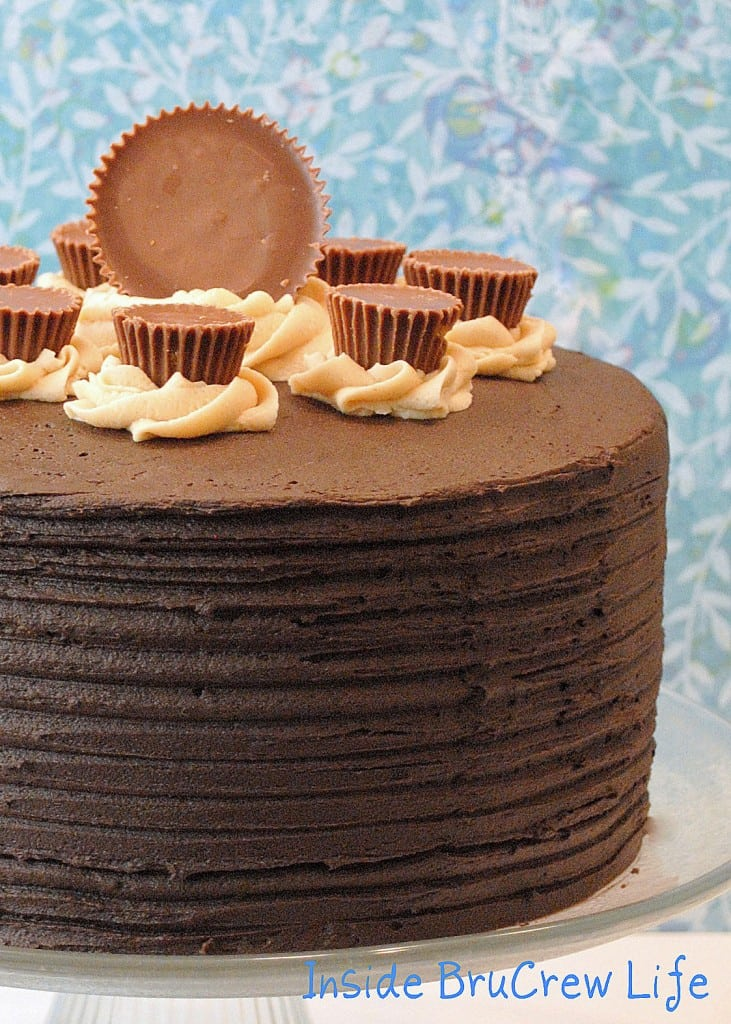 Peanut Butter Explosion Cake 2