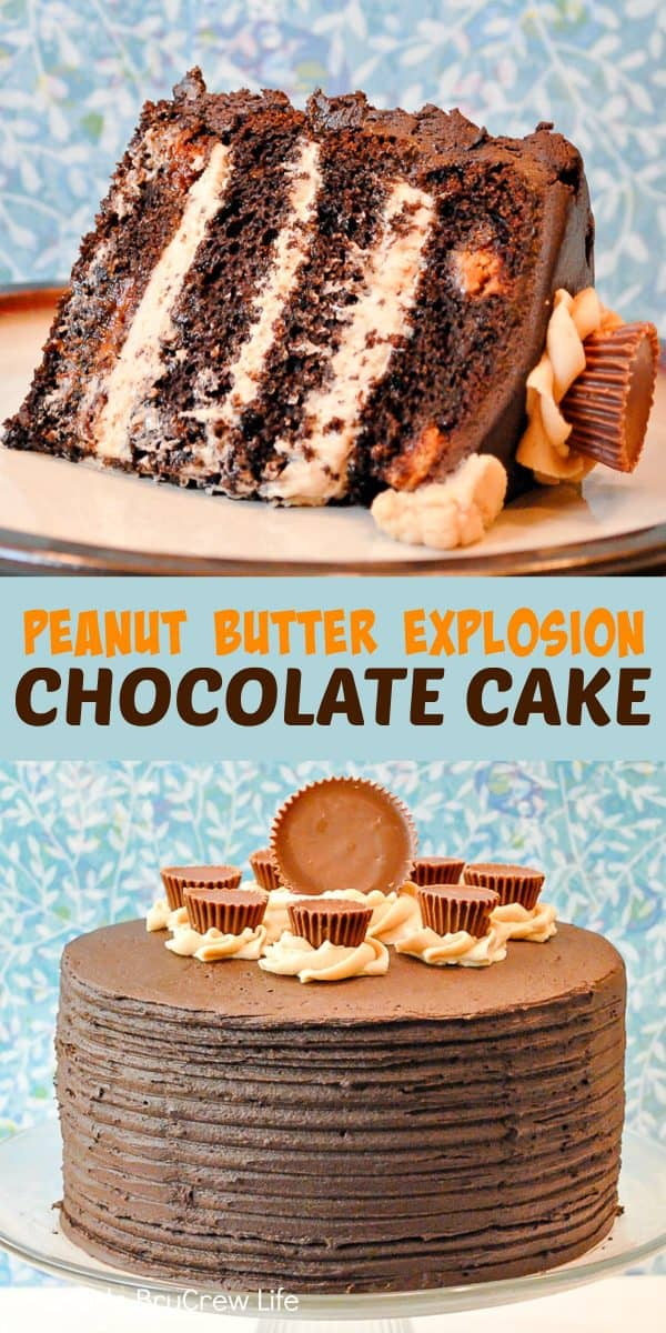 Peanut Butter Explosion Chocolate Cake - the layers of peanut butter frosting and candies make this chocolate cake mix a decadent dessert. Make this easy recipe for parties and events! #chocolatecake #chocolate #peanutbutter #cake