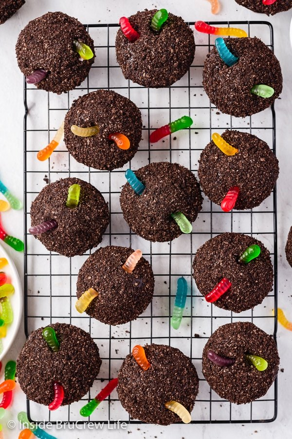 Overhead picture of a black wire cooling rack with a bunch of Oreo dirt cupcakes topped with gummy worms on it.