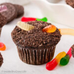 Pudding Filled Dirt Cupcakes with Gummy Worms
