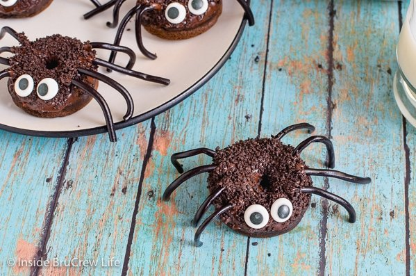 A chocolate spider donut on a teal board with a plate of spider donuts behind it