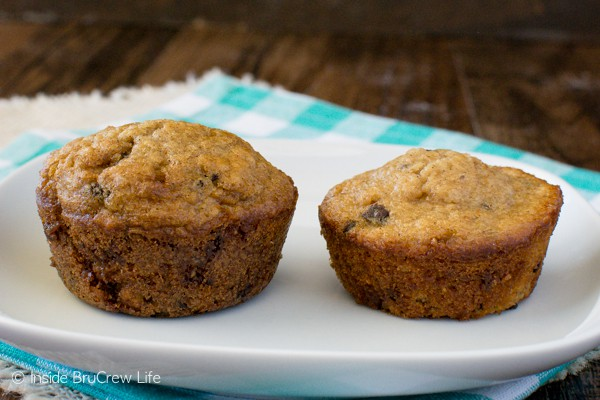 Chocolate Chip Oatmeal Muffins test