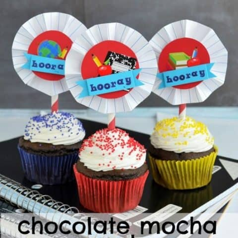 Chocolate Mocha Cupcakes with Cool Whip Frosting