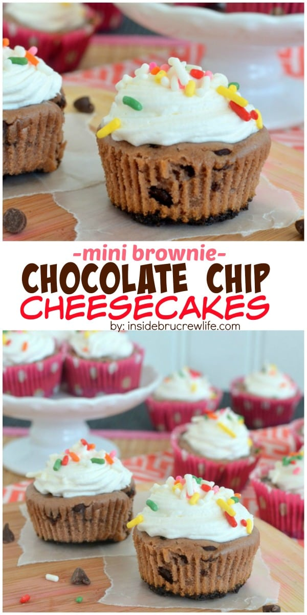 These mini cheesecakes have a fun brownie and chocolate chip twist. Perfect for munching on any time of day!