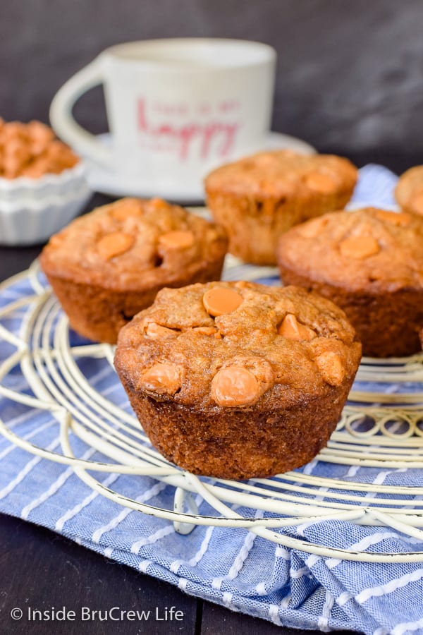 Butterscotch Banana Muffins - butterscotch chips add a sweet goodness to these easy banana muffins. Try this recipe with the ripe bananas on your counter! #banana #muffins #butterscotch #breakfast #afterschooolsnack