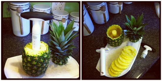 Pineapple Corer1