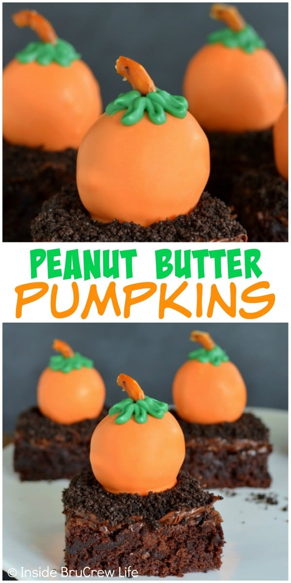 Dipping peanut butter balls in orange chocolate and adding a stem and leaves makes these the cutest fall pumpkins.