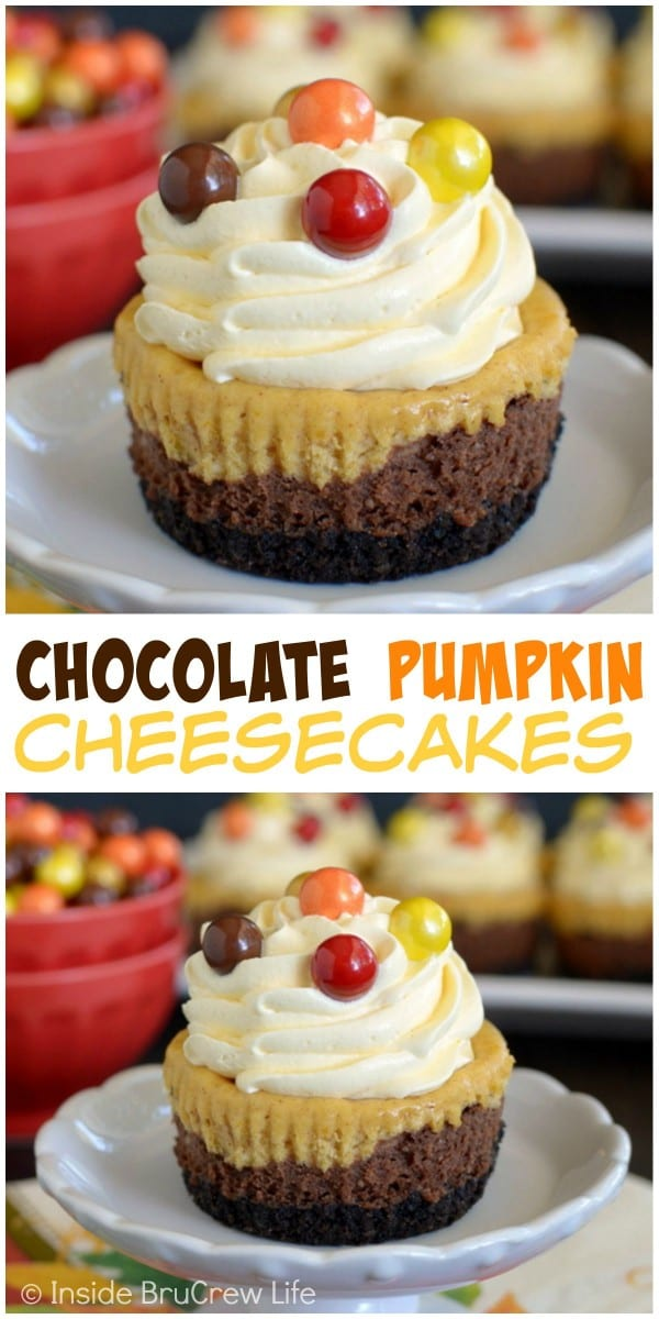 Layers of chocolate and pumpkin cheesecake make these mini cheesecakes a fun treat.