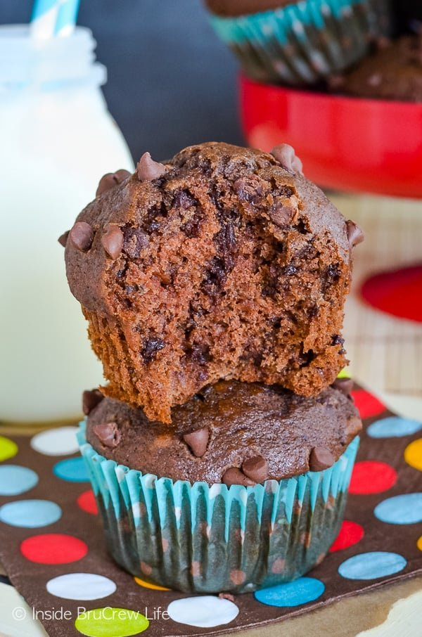 Double Chocolate Banana Muffins - chocolate chips and cocoa powder make these easy banana muffins taste incredible!! Try this recipe the next time you have ripe bananas! #muffins #chocolate #bananamuffins #breakfast #muffinsformom #banana