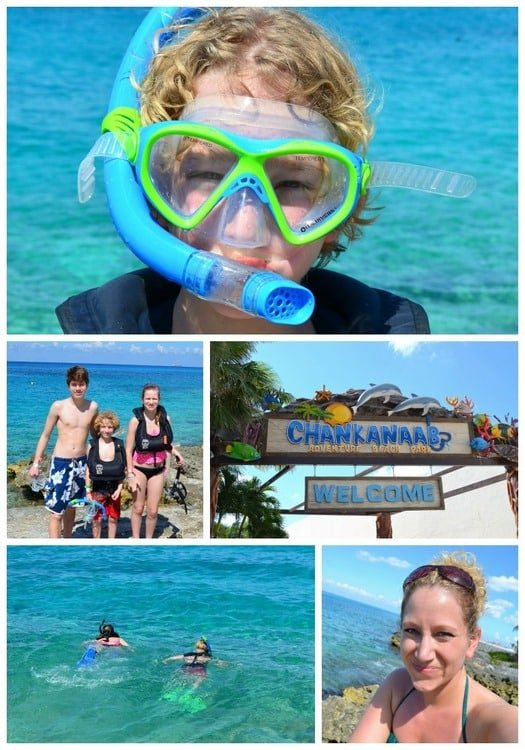 Cruise collage snorkeling