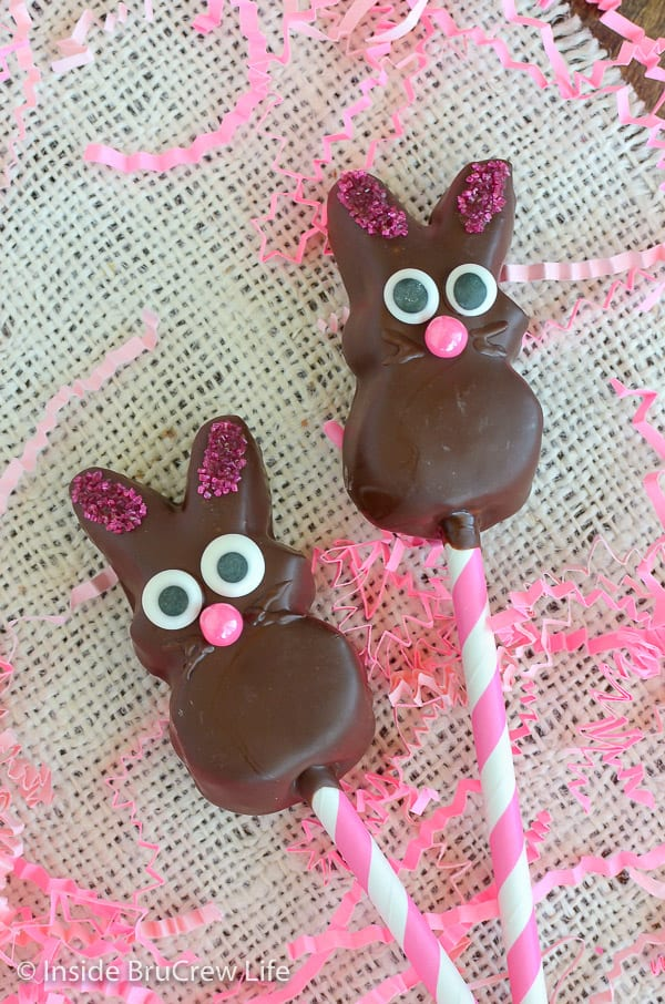 Overhead picture of two chocolate covered marshmallow bunnies on pink and white straws