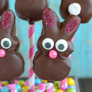 Close up picture of a chocolate covered marshmallow bunny with a candy face