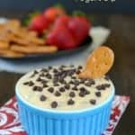 Salted Caramel Chocolate Chip Yogurt Dip