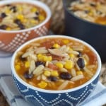 Chicken Enchilada Orzo Soup