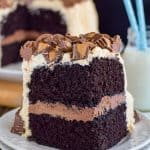 Best Chocolate Peanut Butter Cake Recipe