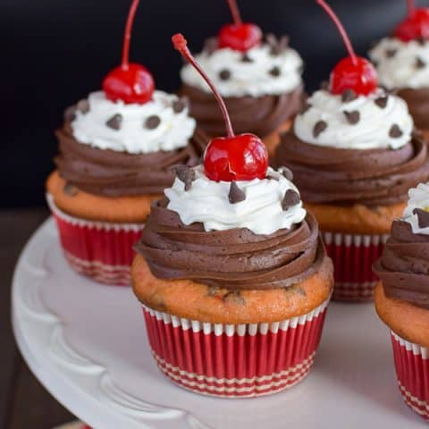 Cherry Chocolate Chip Cupcakes