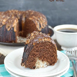 Chocolate Coconut Cake title 2