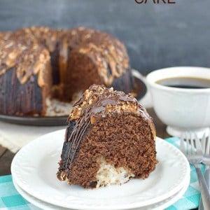 Chocolate Coconut Cake title 2
