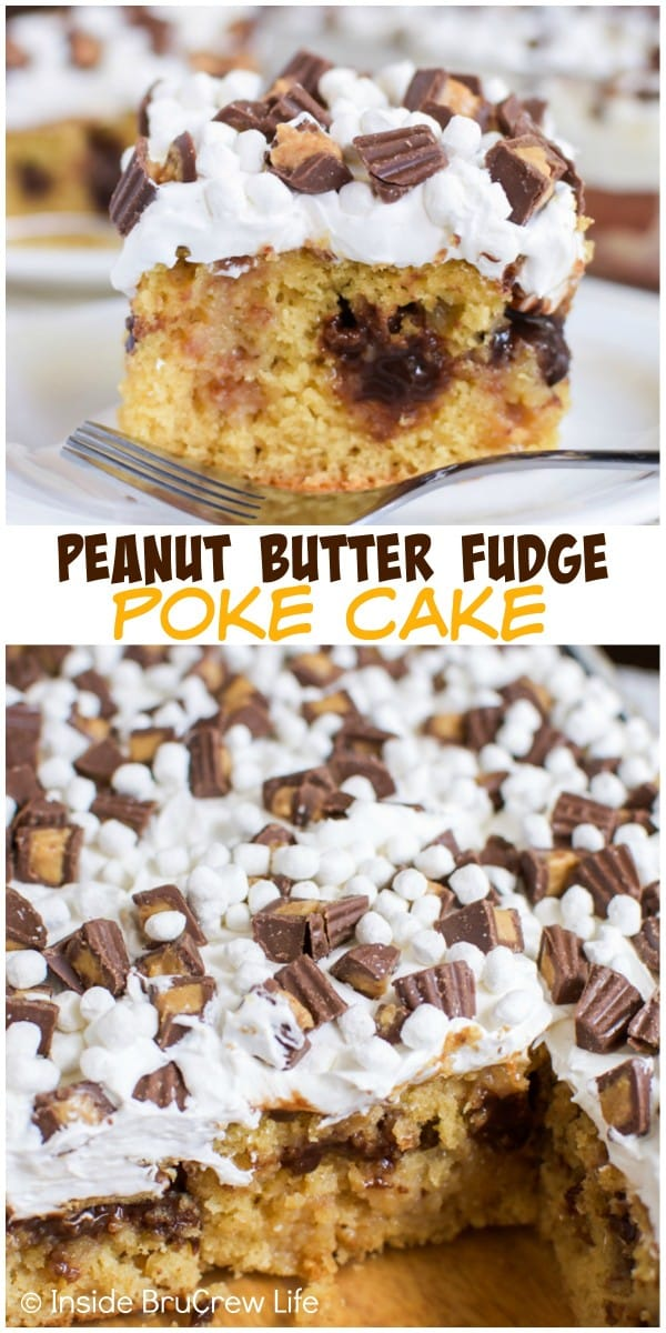 Fudge and marshmallow frosting make this peanut butter cake a delicious picnic treat!