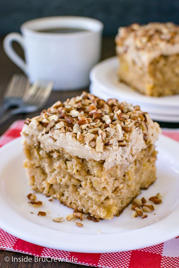 Apple Praline Cake - this soft apple cake is topped with a sweet praline frosting and lots of pecans. It's an amazing recipe to make for fall parties or dinners! #cake #apple #pralinefrosting #fall #recipe
