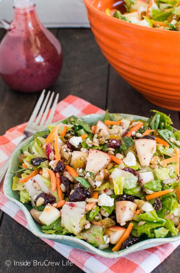 The homemade cranberry poppyseed dressing recipe makes this Cranberry Poppyseed Apple Salad great for picnics and dinner parties.
