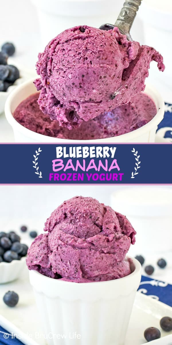 Two pictures of blueberry banana frozen yogurt collaged together with a blue text box