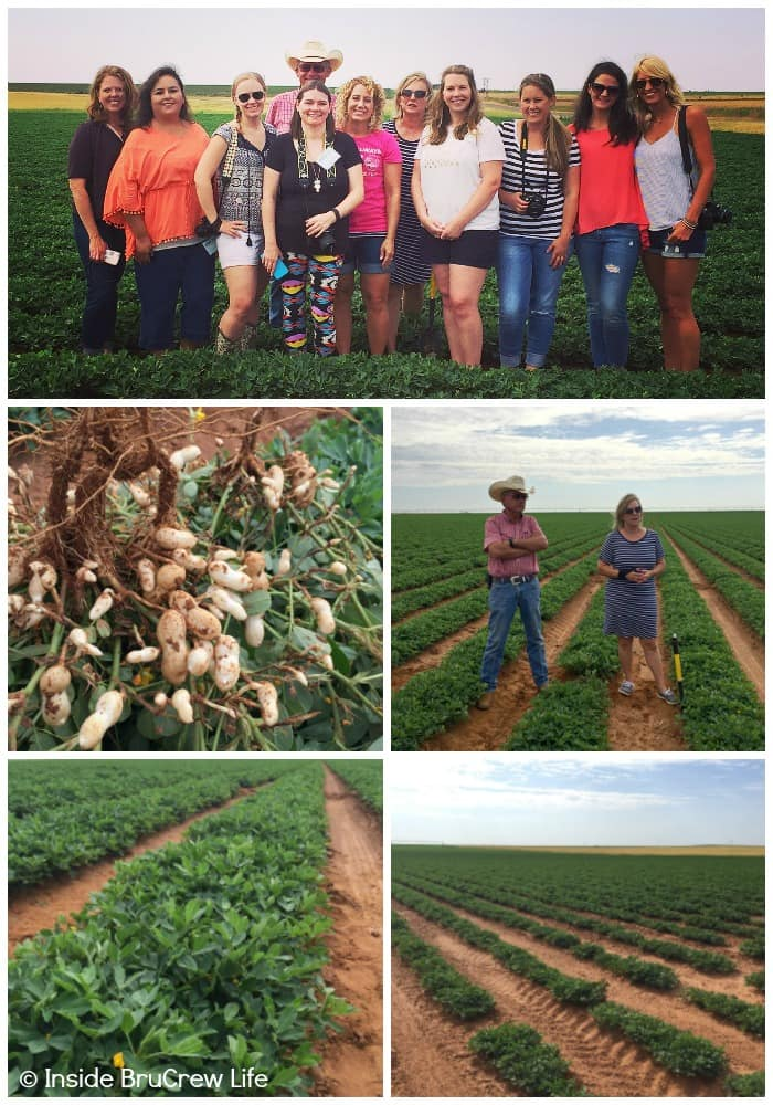 Texas Peanut Tour