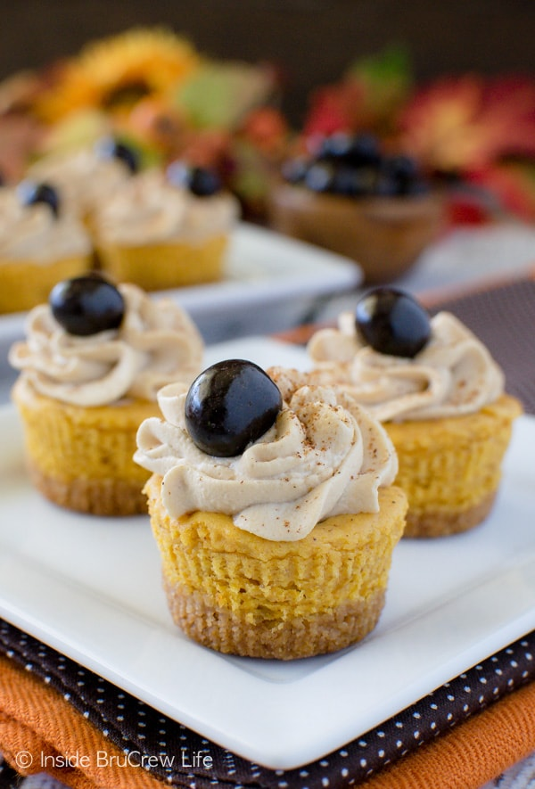 Pumpkin Spice Latte Cheesecake Bites - swirls of coffee whip add a delicious taste to these mini pumpkin treats. Awesome recipe for fall parties.