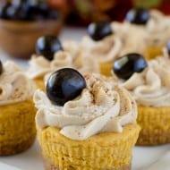 Pumpkin Spice Latte Cheesecake Bites
