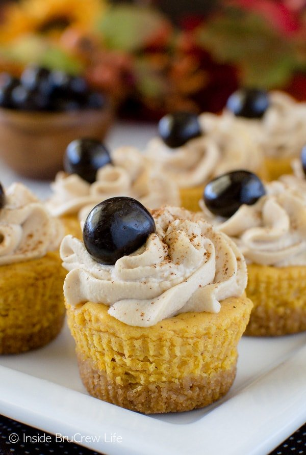 Mini Pumpkin Cheesecake Bites Recipe - EatingWell  |Mini Pumpkin Cheesecake Bites