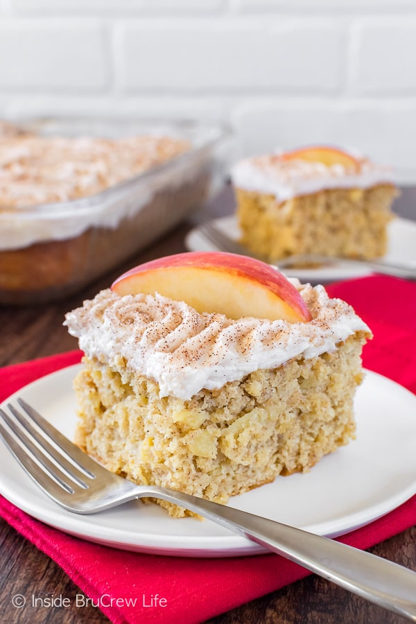Snickerdoodle Apple Cake - three times the apple goodness makes this soft cake disappear in a hurry. Great dessert recipe!
