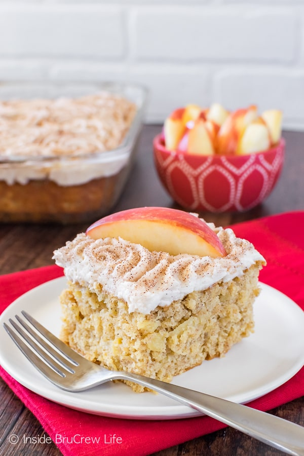 Snickerdoodle Apple Cake - three times the apple goodness makes this soft cake disappear in a hurry! Great easy dessert recipe!