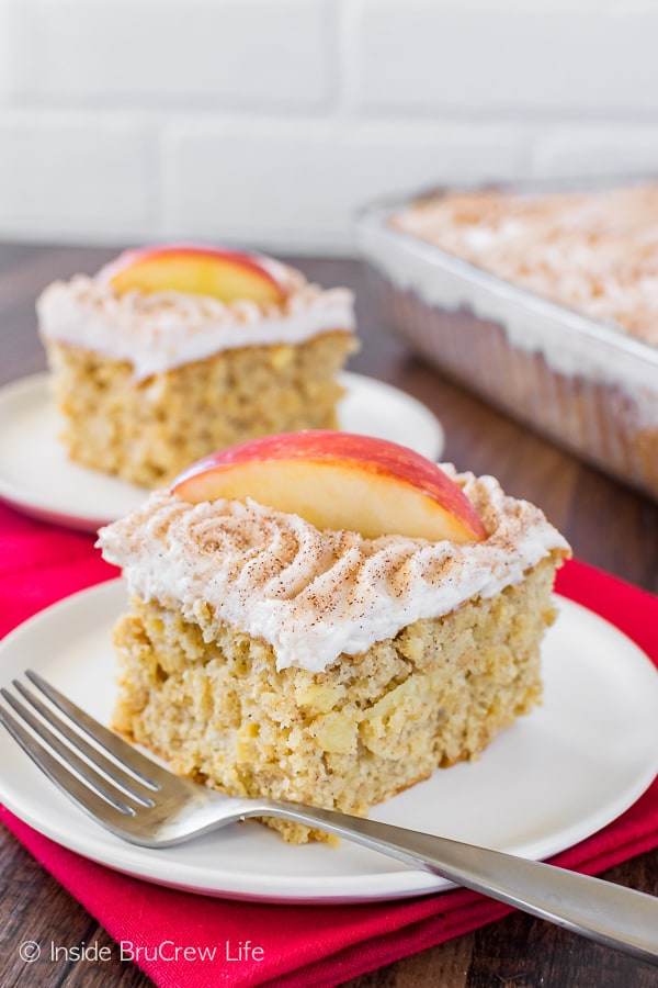 Snickerdoodle Apple Cake - creamy frosting and cinnamon sugar add a delicious topping to this easy apple cake! Great dessert recipe!