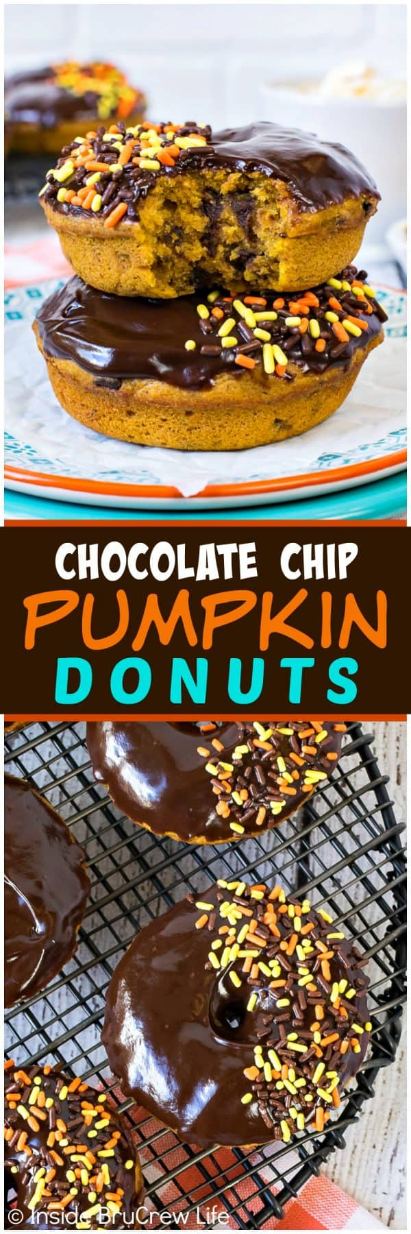 Chocolate Chip Pumpkin Donuts - these soft dense pumpkin donuts are loaded with chocolate goodness on top and inside. Great fall recipe for breakfast or after school snacks.