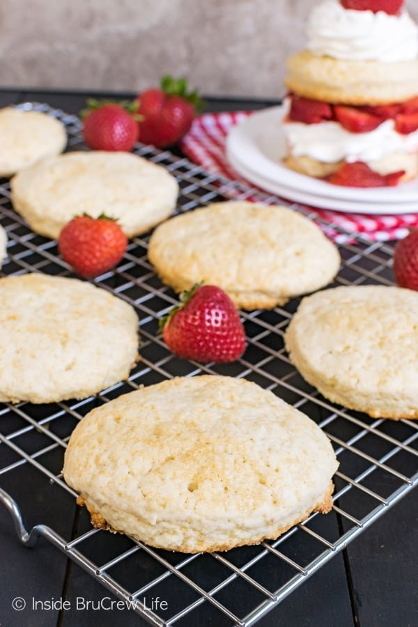 Homemade Strawberry Shortcake - these easy sweet biscuits are great when layered with fresh fruit and cream or ice cream. Great classic dessert that everyone loves! #strawberry #shortcake #homemade #biscuits #summerdessert #recipe