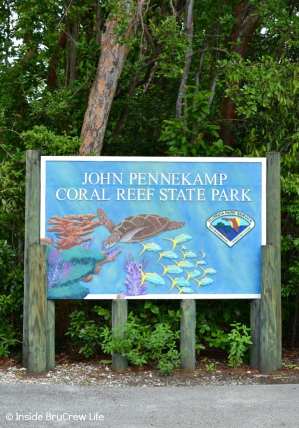 Fun Things to do While Driving the Florida Keys - go snorkeling or paddle boarding at John Pennekamp Coral Reef State Park #travel #Florida #sunshinestate #roadtrip