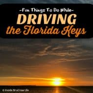 Fun Things To Do While Driving the Florida Keys