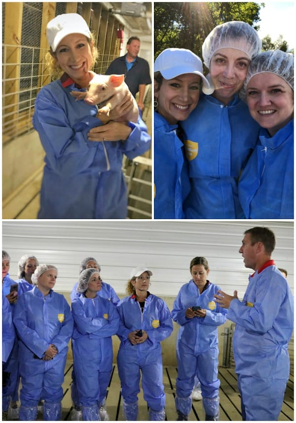 Three pictures collaged together of a group of bloggers learning about pig farming and how to cook pork