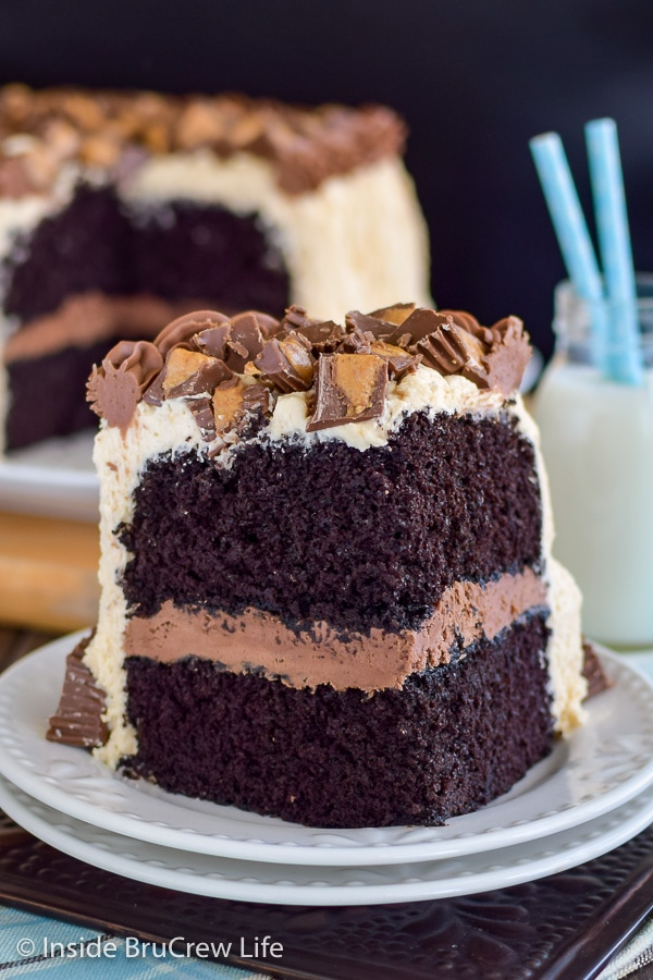 A white plate with a large piece of chocolate peanut butter cake with peanut butter cups on top.