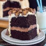 Best Chocolate Peanut Butter Cake Recipe