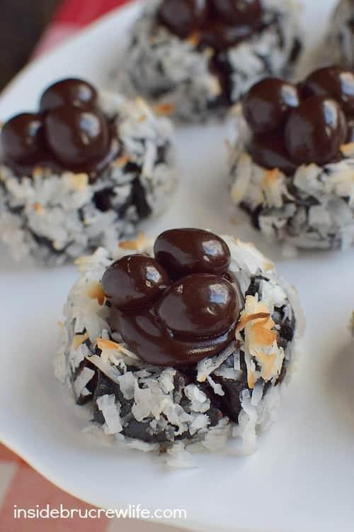 Mocha Coconut Chocolate Blooms