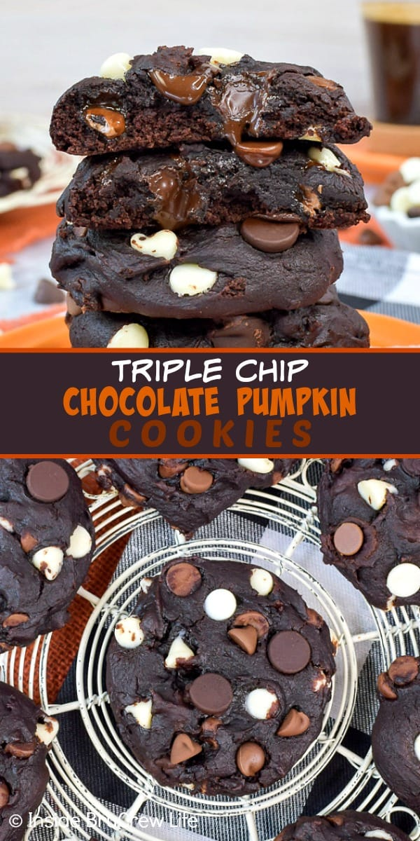 Triple Chip Chocolate Pumpkin Cookies - dark chocolate pumpkin cookies loaded with three kinds of chocolate chips are a delicious fall treat. Make this easy recipe for parties and bake sales. #cookies #pumpkin #chocolatechip #fallbaking
