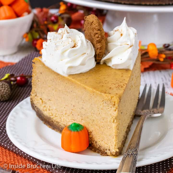 A slice of pumpkin cheesecake with Cool Whip swirls on a white plate.