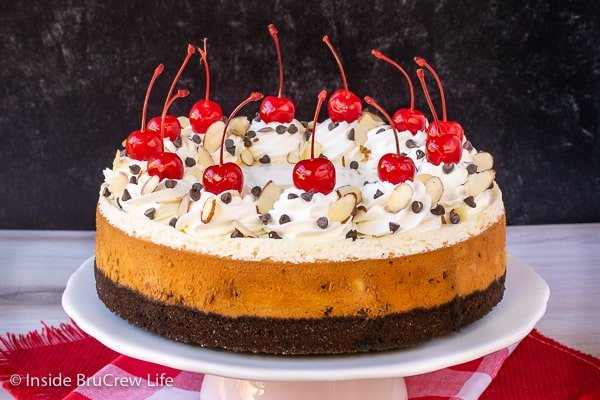 Almond Cherry Chip Cheesecake - chocolate and cherries give this almond cheesecake a fun flavor and look. Make this impressive dessert for parties and events. #cheesecake #almond #cherry #chocolatechip #valentinesday #holidaydessert #Christmas