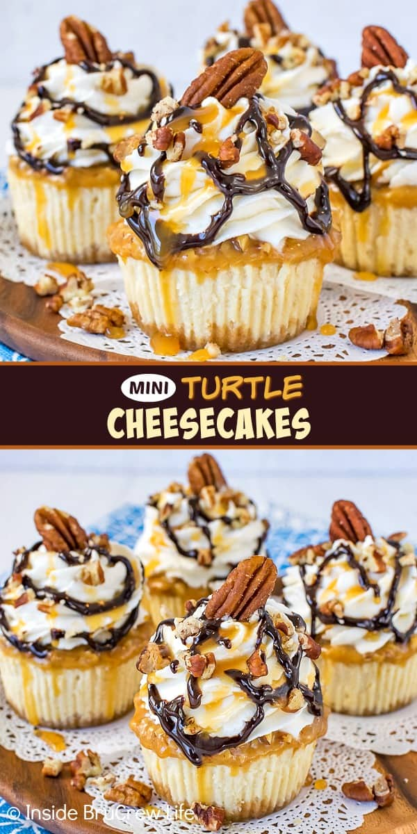 Two pictures of mini turtle cheesecakes collaged together with a brown text box