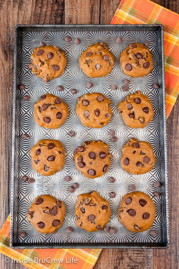 Overhead picture of a sheet pan with pumpkin chocolate chip cookies on it.