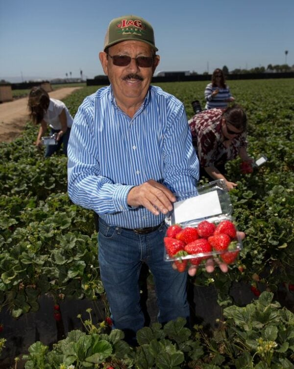 Farmer Luis Chavez from L&G Farms in California holding a box of strawberries