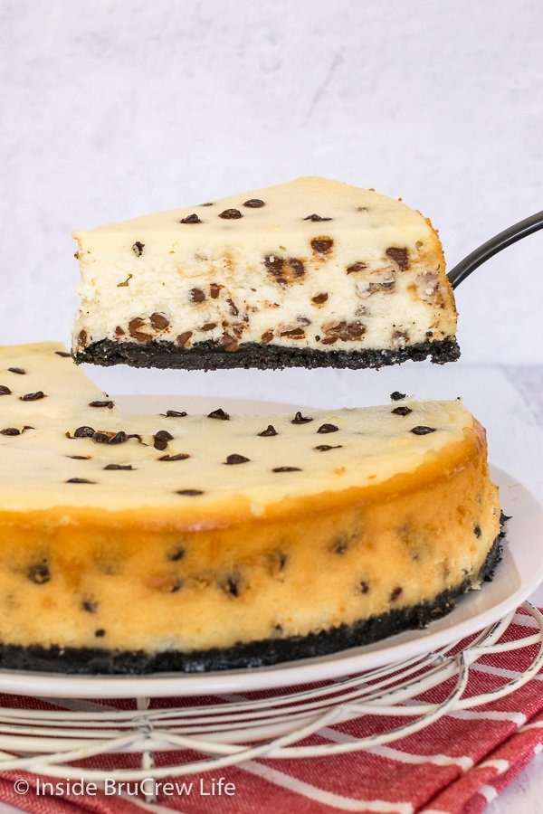 A full sized chocolate chip cheesecake on a white plate with a spatula lifting a slice above it